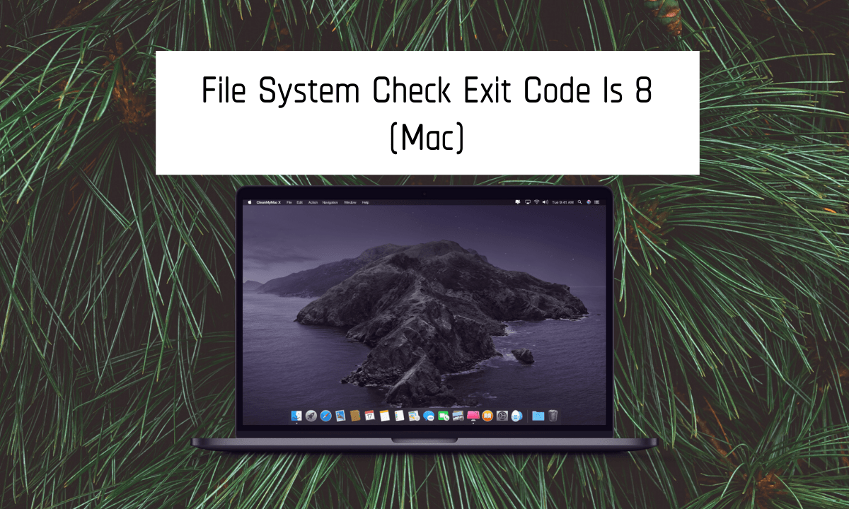 File System Check Exit Code Is 8!!!! How to Fix [Step By step Process]