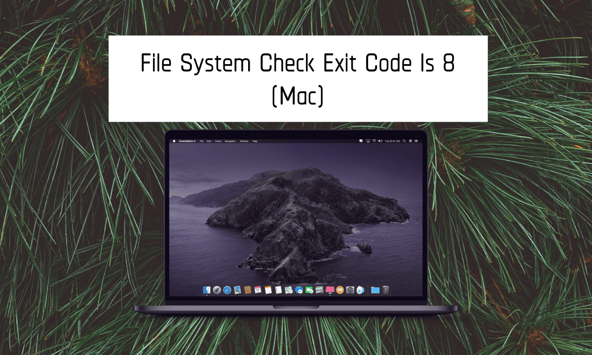 file system check exit code is 8